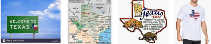 Texas Business Email list
